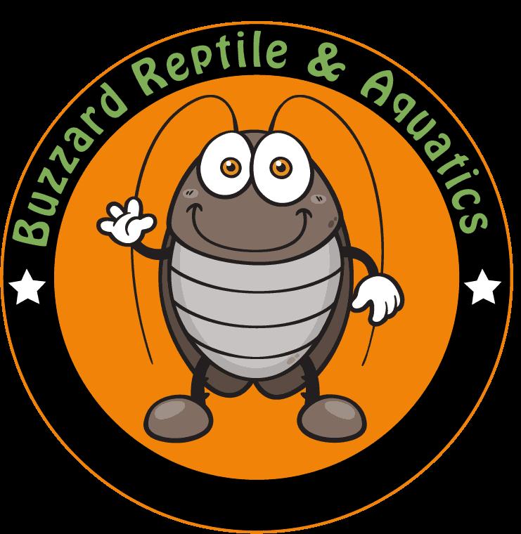 Buzzard Reptiles & Aquatics