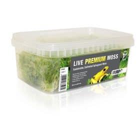 Pro Rep Premium Sphagnum Moss