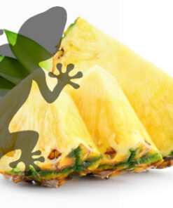 Reptile Supplies Gecko Diet - Pineapple Passion